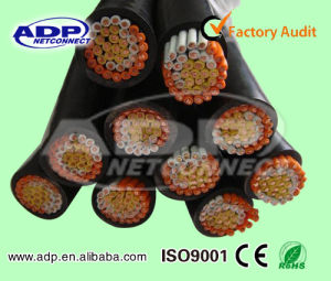 450/750V Control Cable (KVVR) 0.75~10sqmm pictures & photos
