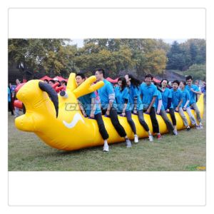 Colorful Inflatable Insect Racing Sports Inflatable Games for Team Building pictures & photos