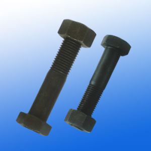 Track Bolt with Hexagon Head pictures & photos