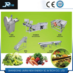 Strawberry Washing Drying Machine pictures & photos