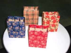 The New Design of The New Style Gift/Shopping Paper Bag