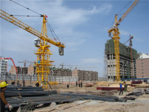 Crane Sale Offered in China by Hstowercrane pictures & photos