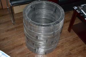 Spiral Wound Gaskets Ss316 Graphite