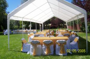 Wedding Party Tent Outdoor Easy Set Gazebo Upal Pavilion Canopy Cater Events (PT2045) pictures & photos