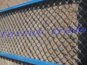 High Security Stainless Steel Wire Rope Mesh Fence pictures & photos