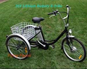 Strong Multi-Speed Elder Electric Cargo Trike (FP-ETR002) pictures & photos