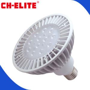 High Lumen White 15W PAR38 LED Lamp with LG SMD