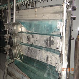 Chickens Birds Poultry Abattoir Plant Slaughterhouse pictures & photos