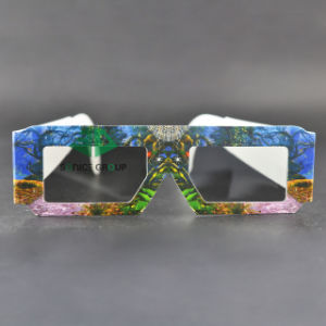 Paper Linear Polarized 3D Glasses (SNLP 033)