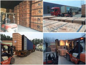 Linyi Cheap Plywood Used for Construction, Concrete Formwork Plywood for Sale pictures & photos
