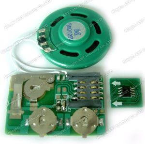 DIY Sound Module, Programmable Module, Voice Recording pictures & photos