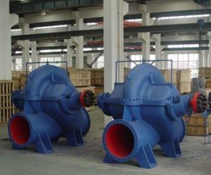 Split Casing Volute Pump Double Suction (SLOW900-900) pictures & photos