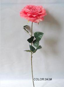 Artificial Flowers of Dutch Rose 74cm Gu-D70185 pictures & photos