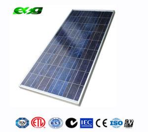 High Quality 100W Polycrystalline Solar Panel