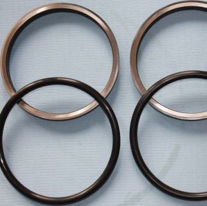Hydraulic Seal Ring (HF2050) pictures & photos