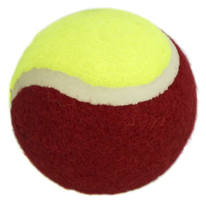 Tennis Ball/Pet Tennis Ball, Chemical Fiber Felt, Buck Packing pictures & photos