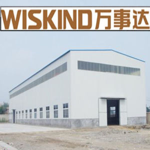 Warehouse Steel Structure for Building (WSDSS100) pictures & photos