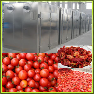 Stainless Steel Industrial Food Dehydrator Machine pictures & photos