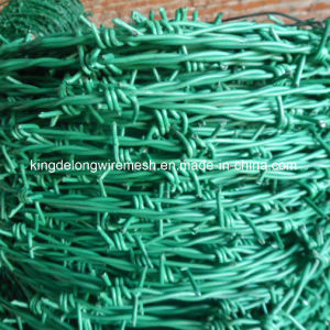 PVC Coated Steel Wire Barbed Wire (KDL-31) pictures & photos