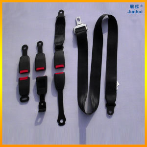 High Quality Static 2 Point Safety Belt for Car/Bus/Motorcycle Passenger Seat (JH-LU-2J001)