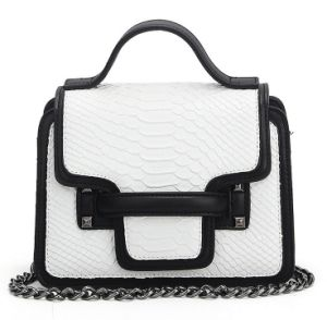 Simple Style Bag Mixed Colors Fashion Bag Designer Handbag (XZ1040) pictures & photos