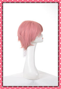 Short Size Synthetic Wig Bob Style pictures & photos