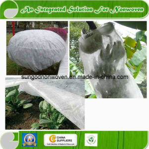 Nonwoven for Agriculture (Sungod05-04) pictures & photos