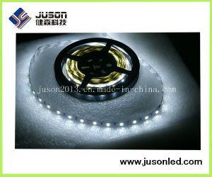 Js-SLR3528-60W-W White Color Decorating LED Strip Light 4.8W 60PCS LED/M pictures & photos