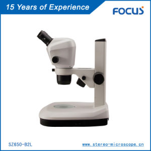 Parallel Optical Zoom Stereo Microscope pictures & photos