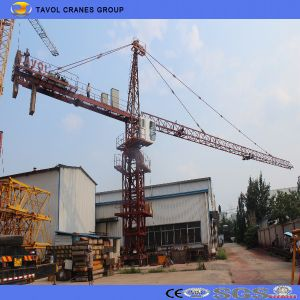 Qtz125-6015 10t Tower Crane pictures & photos