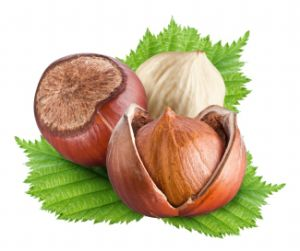 Chinese Fresh Sweet Chestnut with Competitive Price pictures & photos