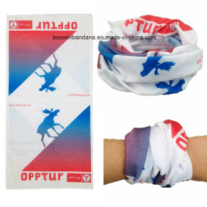 Factory Produce Custom Logo Printed Multifunctional Seamless Tube Headwear pictures & photos