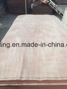 Red Colour Veneer/Natural Veneer pictures & photos