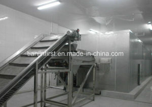 Strawberry Fruit Vegetable Fluidized IQF Quick Freezing Equipment pictures & photos
