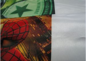 100% Cotton Canvas for Solvent Ink Art Print (PCCG260) pictures & photos