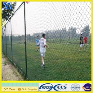 PVC Coated Chain Link Mesh Fence (XA-CL006) pictures & photos
