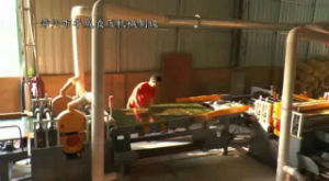 Automatic Saw Table (AIO) pictures & photos