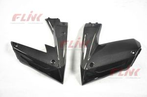 Kawasaki ZX10R 08-09 Carbon Fiber Side Panels pictures & photos
