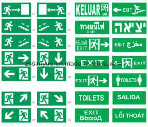 Exit Light Emergency Light Wall Mounted Exit Sign Light pictures & photos