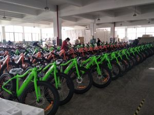 CE Certificated 26inch Electric Mountain Bikes with En15194 (LMTDF-35L) pictures & photos