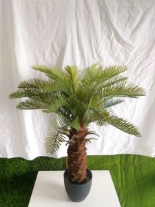Artificial Plants and Flowers of Cycas Gu-SL5093308 pictures & photos