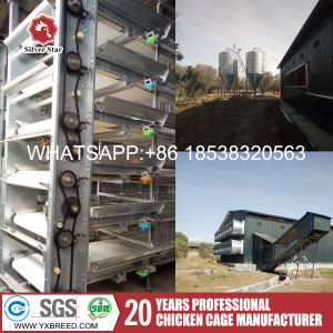 Poultry Farm Layer Cage Equipment with Ce Certificated for Kenya Farm pictures & photos