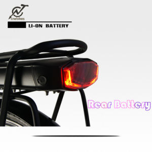 36V 350W Style Electric Bicycle with Rear Rack Lithium Battery pictures & photos