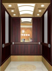 Comfortable and High Quality Passenger Elevator pictures & photos