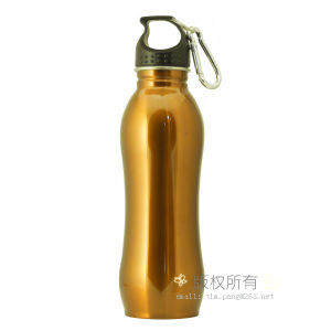 Stainless Steel Travel Flask Coffee Flask Water Flask pictures & photos