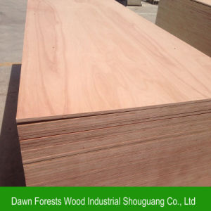 CE Certificate Commercial Plywood for Furniture pictures & photos