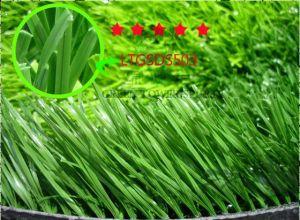 Monofilament Artificial Football Grass (LTGSDS503)