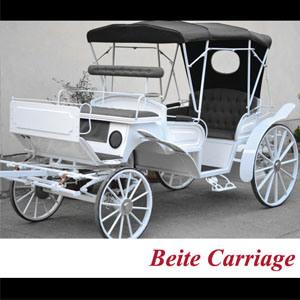 Wedding Cinderella Horse Drawn Carriage for Sale