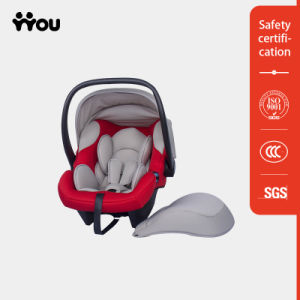 Child in Car Seat pictures & photos