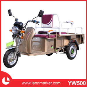 Fashionable Adult Electric Tricycle pictures & photos